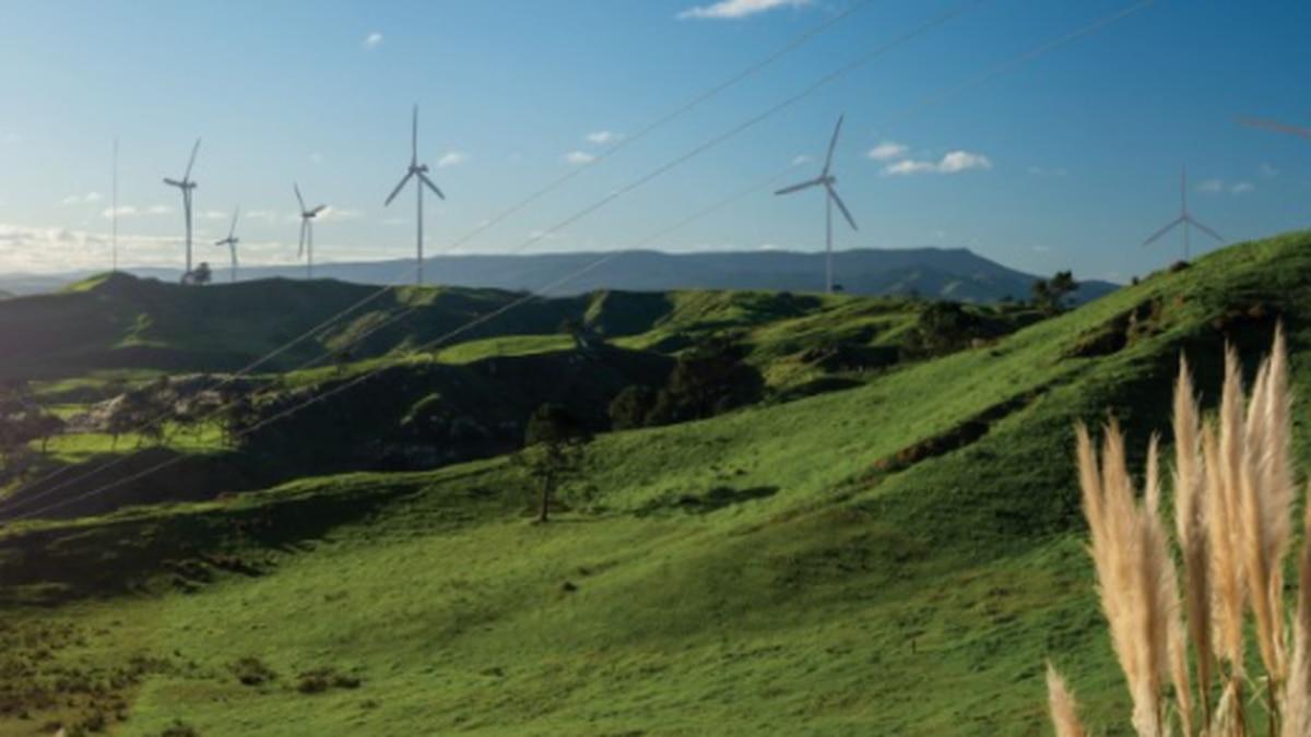 Genesis Energy and Tilt Renewables partner in 75MW Northland wind farm