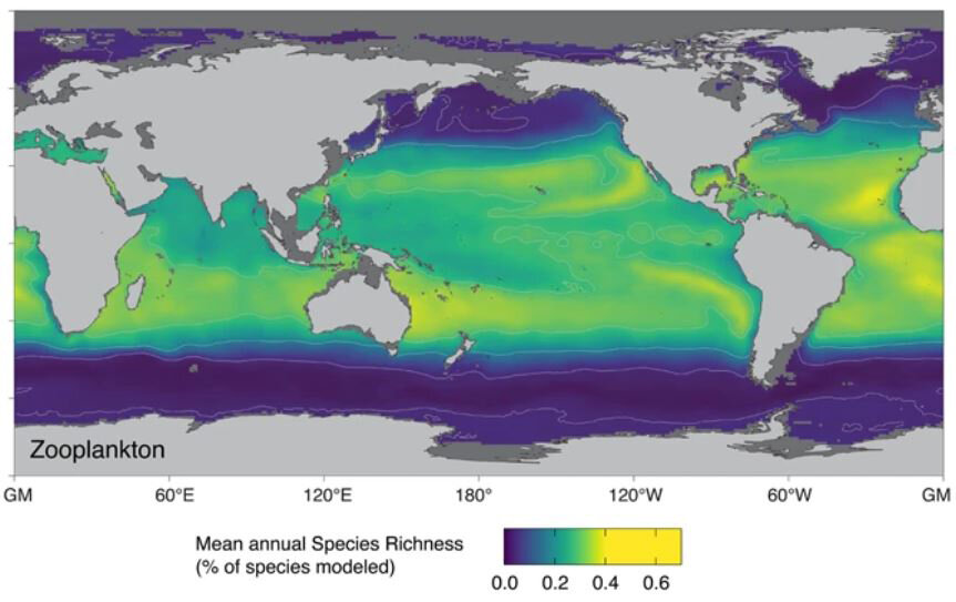 Plankton may head poleward as a result of global warming