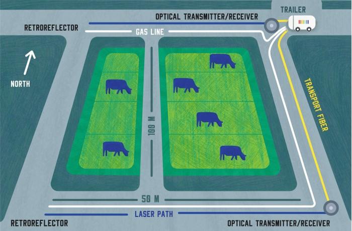 """研究人员使用""""农业频率梳""""测量奶牛排放的气体情况"""