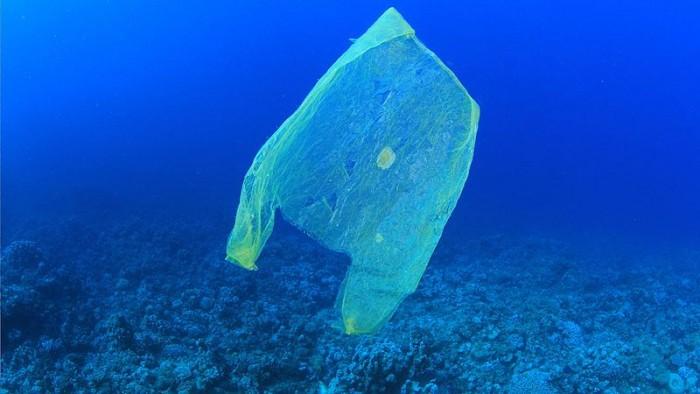 科学家提出对抗海洋污染的创新解决方案