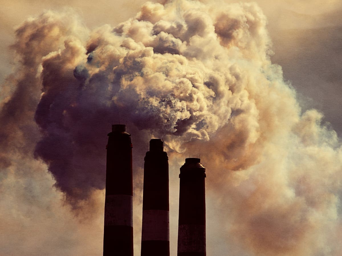 Climate crisis: What is carbon capture and how does it work?