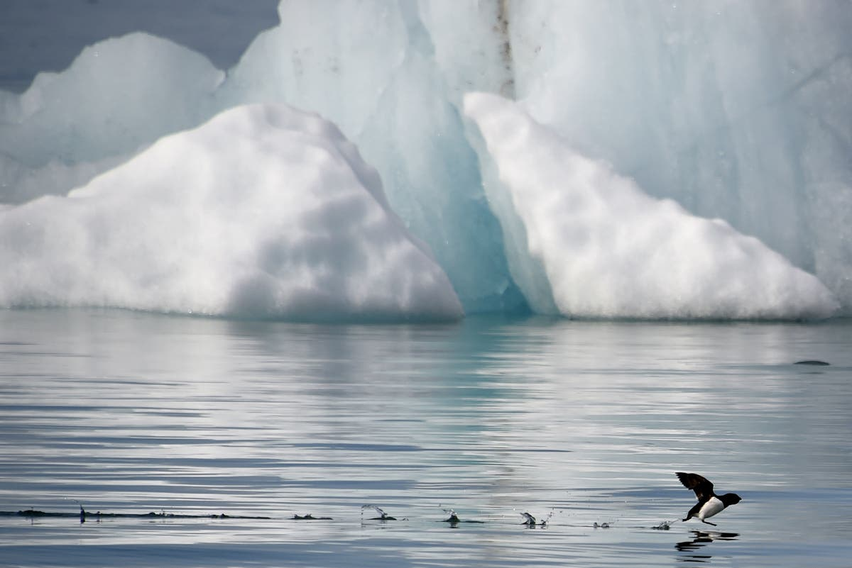 Russian Arctic losing billions of tons of ice due to climate change