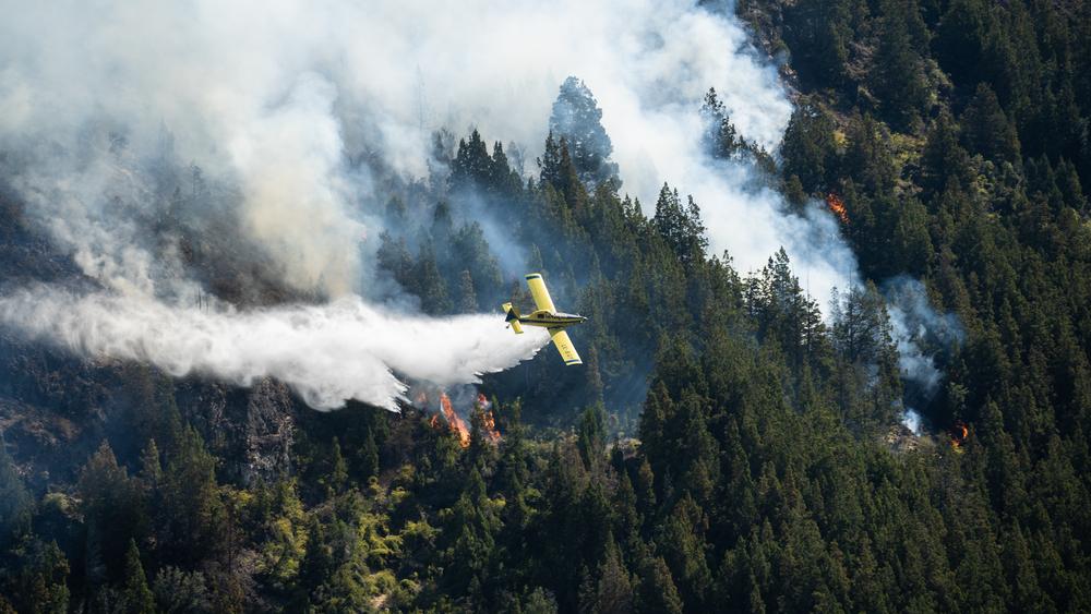 全球各地燃起山火,正面臨有史以來最嚴峻野火季