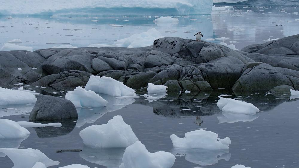 Explainer: How Antarctica is helping in the climate fight and how we can protect it