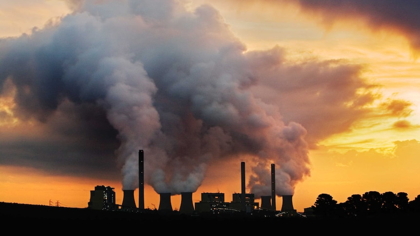 Green group challenges brown coal power station's pollution