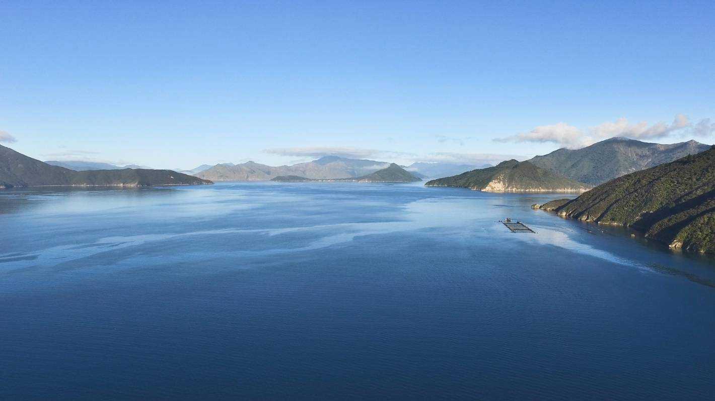 Waste 'footprint' concern sees salmon farm request rejected
