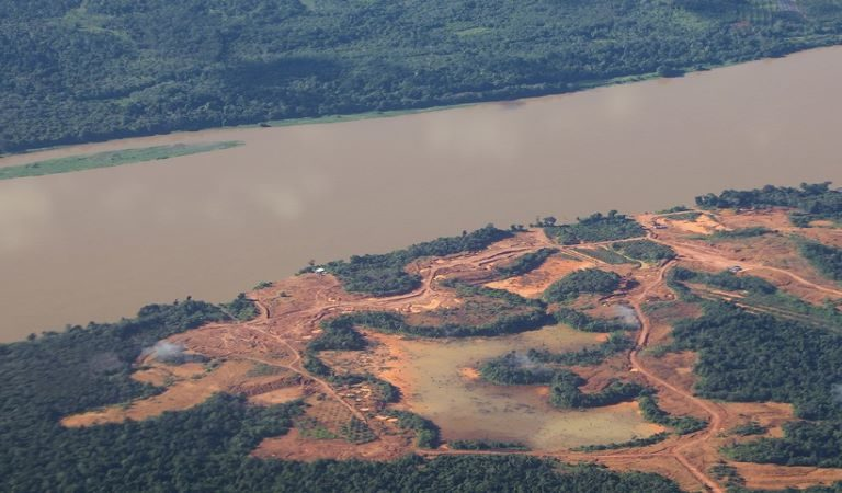 FOREST Act bill would hold global suppliers accountable for illegal deforestation