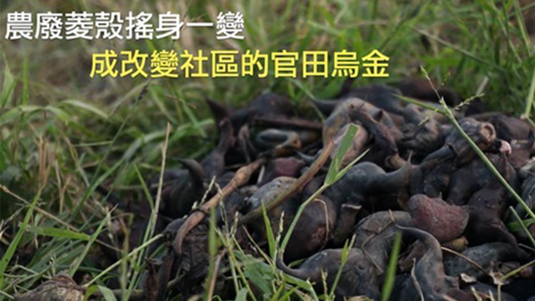農廢再利用 「菱殼」變烏金