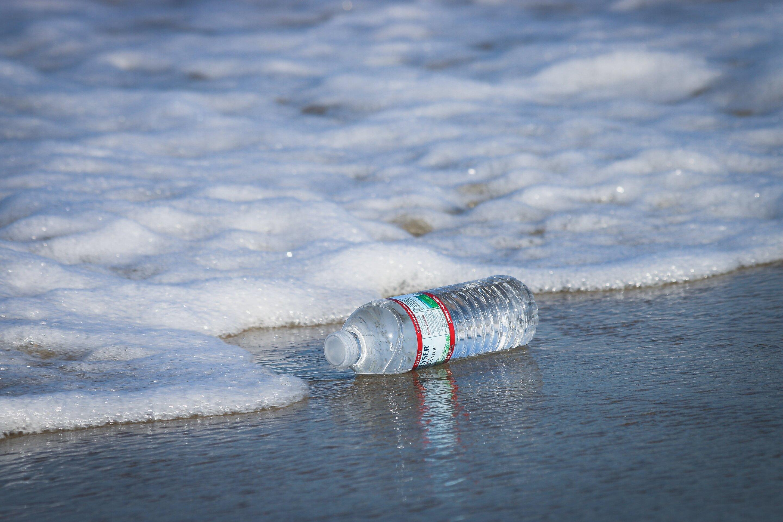 Research shows how plastics threaten biodiversity of marine life