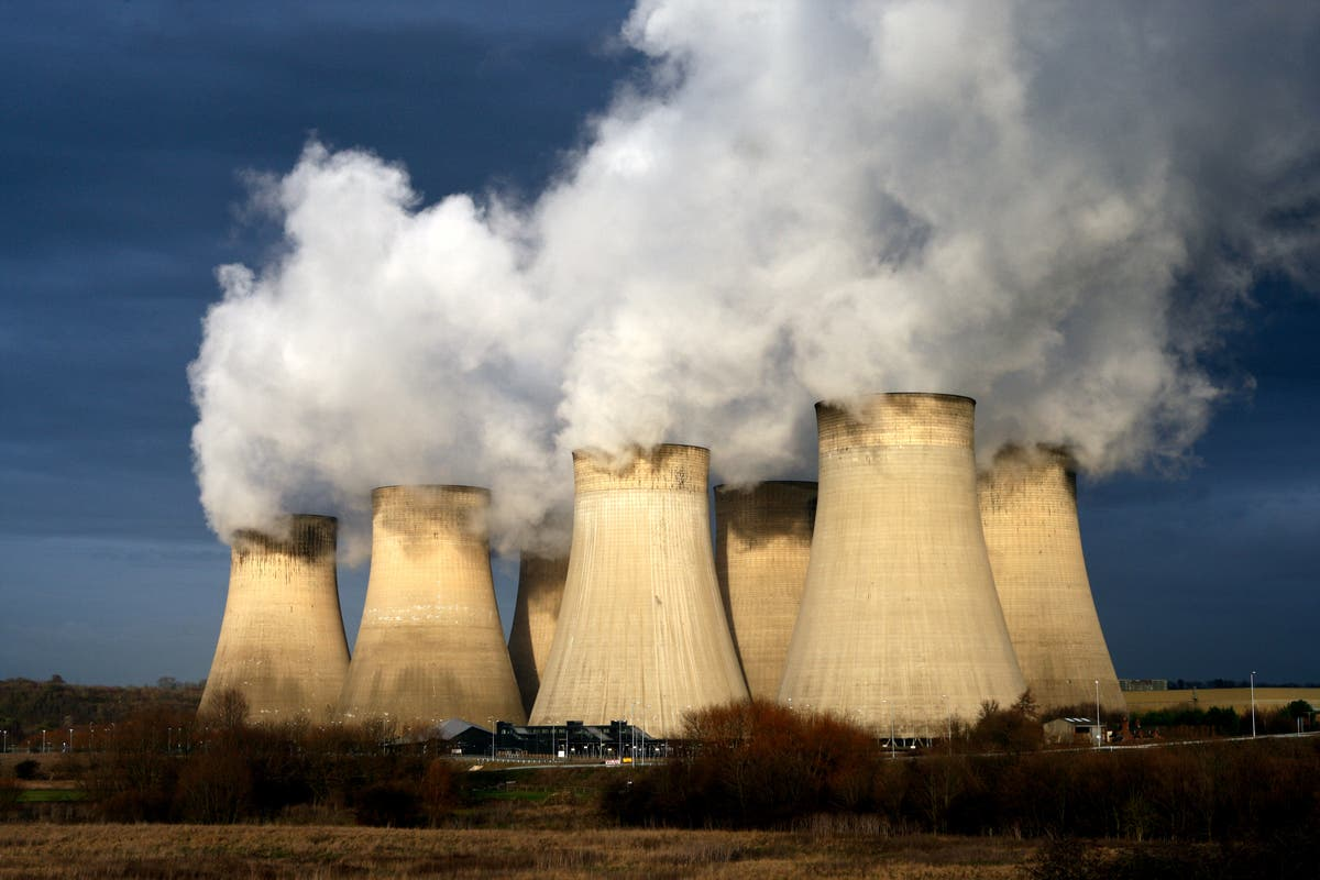 Companies to report environmental impact under new plans